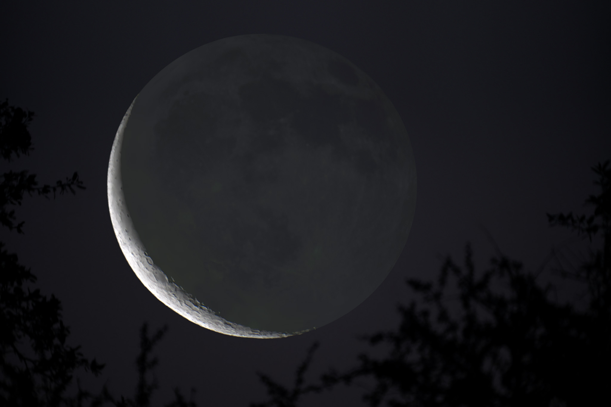 Spring Waning Crescent Moon with Earthshine