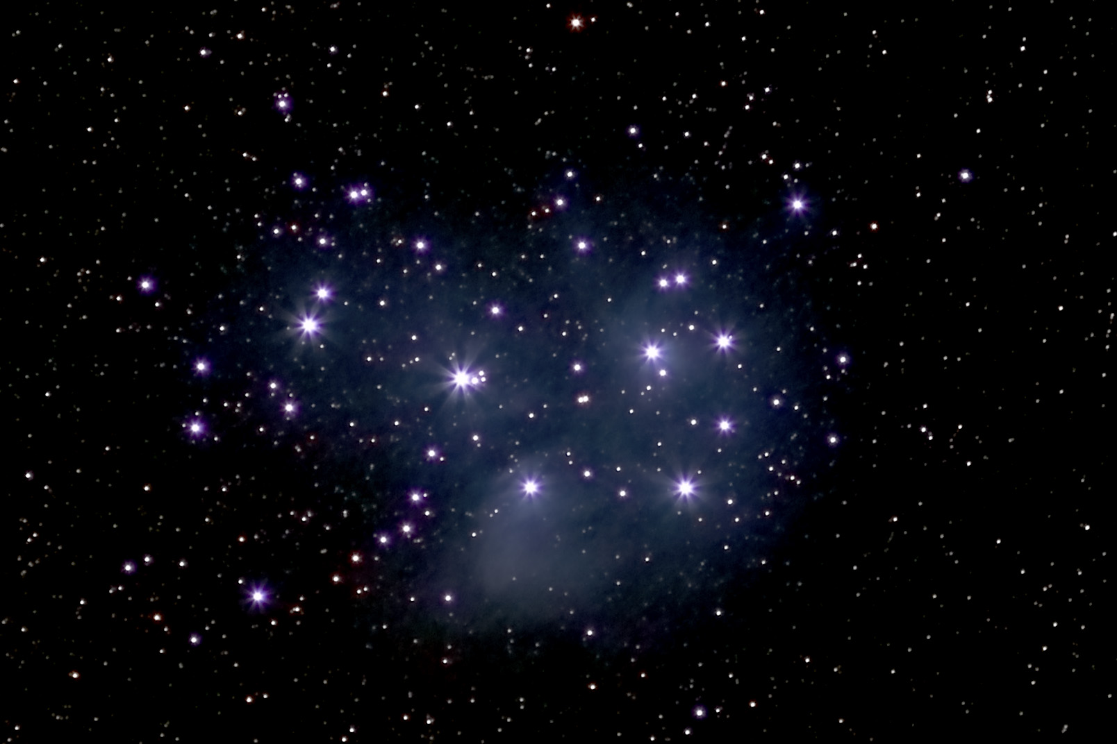 The Pleiades on a whim